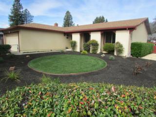 1400 Salvador Avenue, Napa, CA 94558 (#21705420) :: Heritage Sotheby's International Realty
