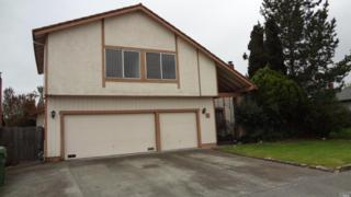 814 Louise Drive, Petaluma, CA 94954 (#21705503) :: RE/MAX PROs