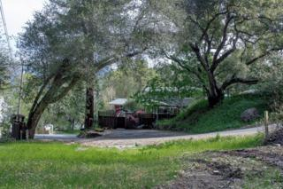 3971 Peterson Drive, Calistoga, CA 94515 (#21705518) :: Heritage Sotheby's International Realty