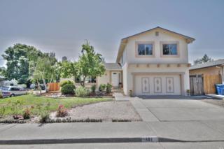101 Rene Drive, Petaluma, CA 94954 (#21705553) :: RE/MAX PROs