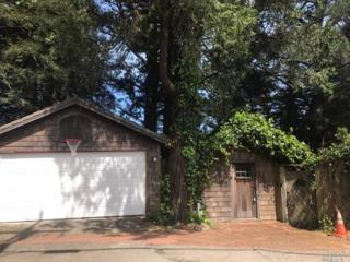 20 Washington Park Avenue, Mill Valley, CA 94941 (#21706299) :: Heritage Sotheby's International Realty