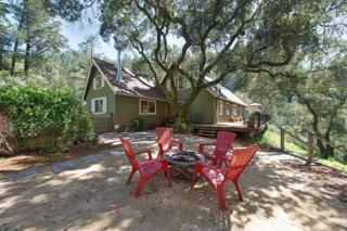 245 Tamal Road, Forest Knolls, CA 94933 (#21706327) :: Heritage Sotheby's International Realty
