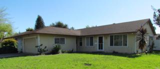 8301 Liberty Avenue, Rohnert Park, CA 94928 (#21707029) :: RE/MAX PROs