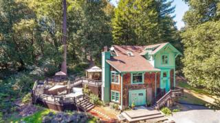 16100 Old Cazadero Road, Guerneville, CA 95446 (#21707376) :: RE/MAX PROs