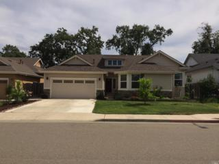 413 Riesling Street, Cloverdale, CA 95425 (#21707942) :: RE/MAX PROs