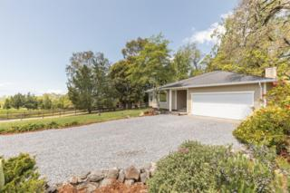 6781 Eagle Ridge Road, Penngrove, CA 94951 (#21708557) :: RE/MAX PROs