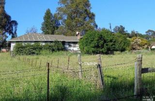 4600 Acacia Way, Penngrove, CA 94951 (#21708676) :: RE/MAX PROs