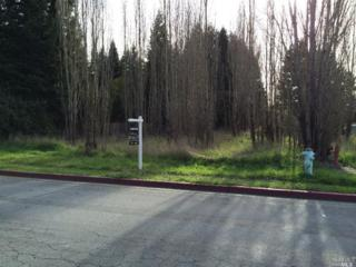 30 Wilford Lane, Cotati, CA 94931 (#21500405) :: RE/MAX PROs