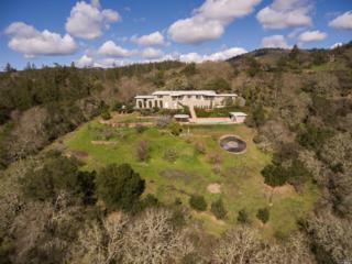 6475 Sonoma Highway, Santa Rosa, CA 95409 (#21702378) :: Heritage Sotheby's International Realty