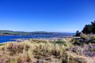 1835 Bay Flat Road, Bodega Bay, CA 94923 (#21704851) :: RE/MAX PROs
