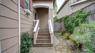 1025 Warren Drive, Petaluma, CA 94952 (#21704971) :: RE/MAX PROs