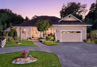 865 Rainshine Court, Penngrove, CA 94951 (#21700237) :: RE/MAX PROs