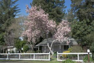 121 Griswold Avenue, Kenwood, CA 95452 (#21701659) :: RE/MAX PROs