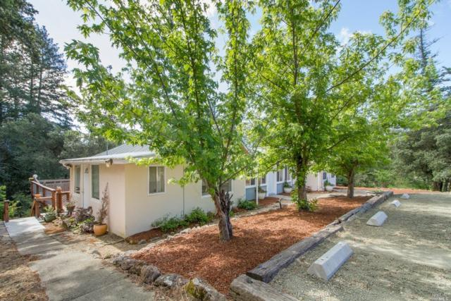 193 Sky Oaks Drive, Angwin, CA 94508 (#21712112) :: Heritage Sotheby's International Realty