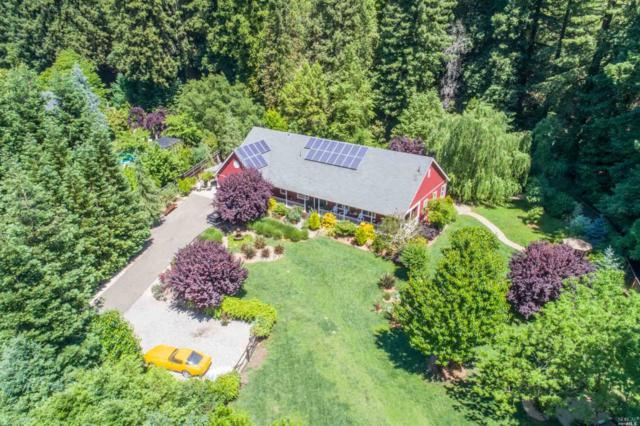 15347 Armstrong Woods Road, Guerneville, CA 95446 (#21712782) :: RE/MAX PROs