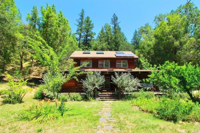 30726 King Ridge Road, Cazadero, CA 95421 (#21714754) :: Heritage Sotheby's International Realty