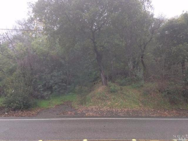 26953 Dutcher Creek Road, Cloverdale, CA 95425 (#21714883) :: Intero Real Estate Services