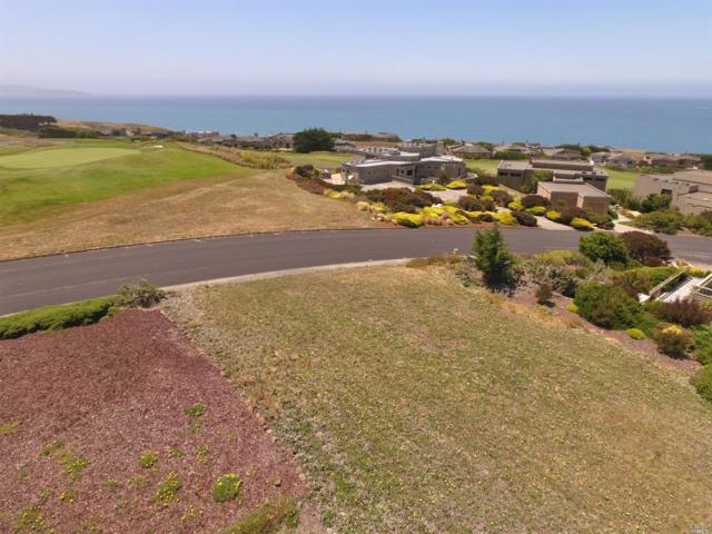 448 Loon Court, Bodega Bay, CA 94923 (#21714968) :: Intero Real Estate Services