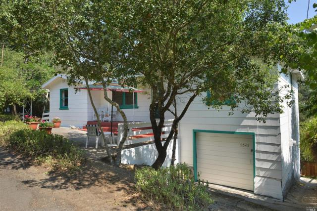 9545 Valle Vista Road, Forestville, CA 95436 (#21717832) :: RE/MAX PROs