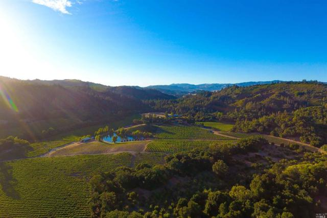 8322 Franz Valley Road, Calistoga, CA 94515 (#21718568) :: Heritage Sotheby's International Realty