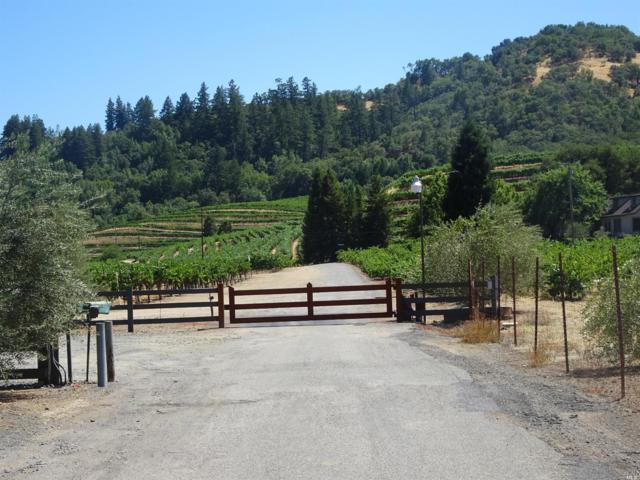 Healdsburg, CA 95448 :: The Todd Schapmire Team at W Real Estate