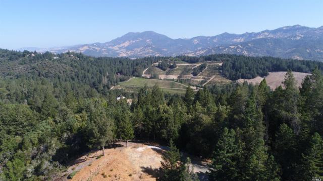 0 Diamond Mountain Road, Calistoga, CA 94515 (#21719317) :: Heritage Sotheby's International Realty