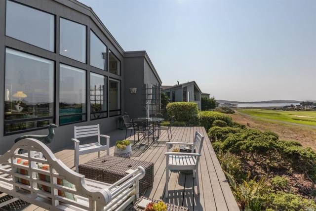 133 Surfbird Court, Bodega Bay, CA 94923 (#21719431) :: RE/MAX PROs