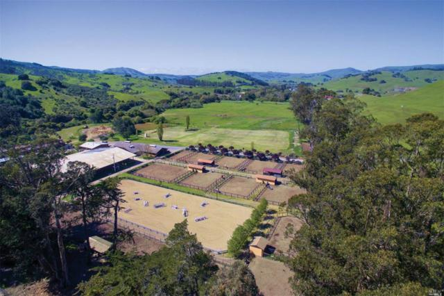 Nicasio, CA 94946 :: Rapisarda Real Estate
