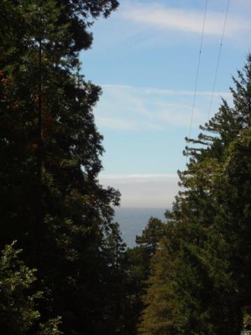 Gualala, CA 95445 :: Perisson Real Estate, Inc.