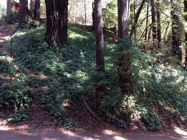 15192 Canyon 6 Road, Guerneville, CA 95446 (#21721554) :: RE/MAX PROs
