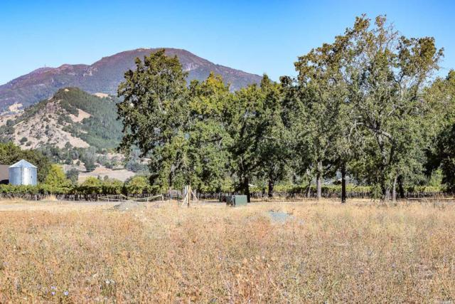 3001 W. Money Lane, Calistoga, CA 94515 (#21723904) :: Heritage Sotheby's International Realty
