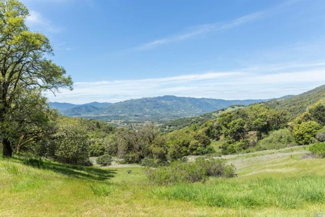 7166 NE Black Bart Trail, Redwood Valley, CA 95470 (#21725021) :: The Todd Schapmire Team at W Real Estate