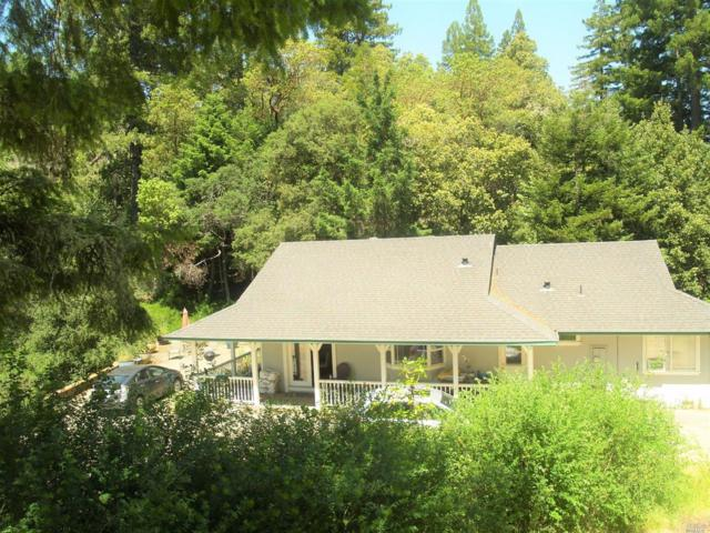 12022 Mays Canyon Road, Guerneville, CA 95446 (#21725479) :: RE/MAX PROs