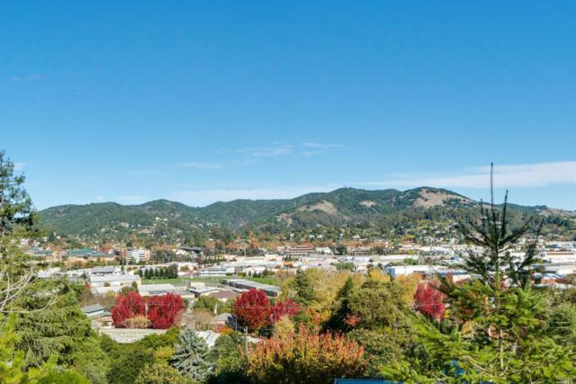 283 Bungalow Avenue, San Rafael, CA 94901 (#21725522) :: Heritage Sotheby's International Realty