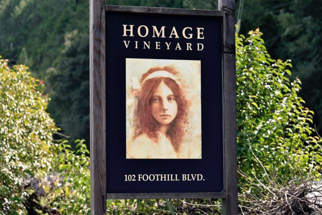 102 Foothill Boulevard, Calistoga, CA 94515 (#21725529) :: Heritage Sotheby's International Realty