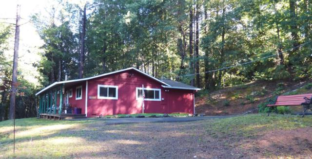 3900 Ridgewood Road, Willits, CA 95490 (#21726831) :: The Todd Schapmire Team at W Real Estate