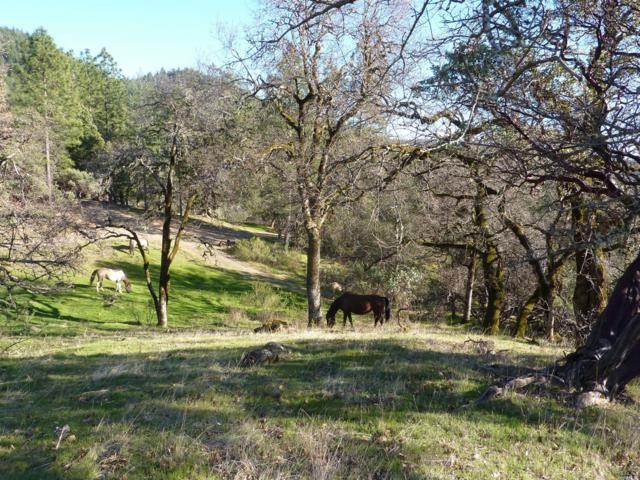16401-B Mid Mountain Road, Potter Valley, CA 95469 (#21803637) :: RE/MAX GOLD