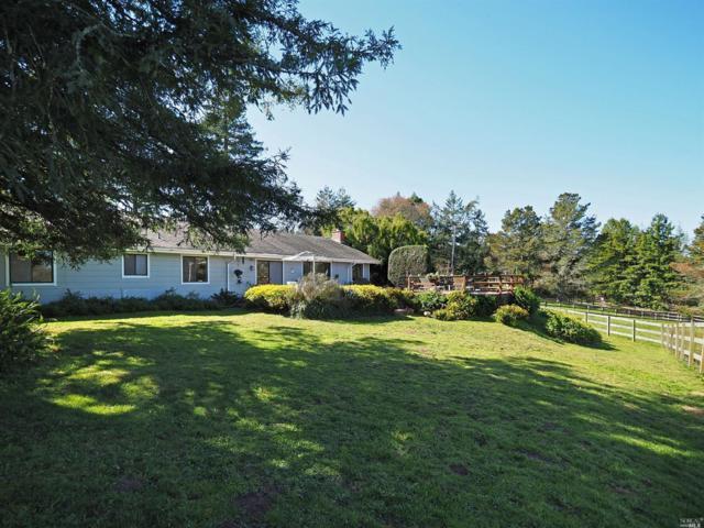 10810 Barnett Valley Road, Sebastopol, CA 95472 (#21803903) :: RE/MAX GOLD