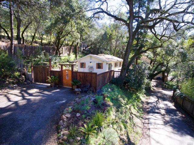 1730 Warm Springs Road, Glen Ellen, CA 95442 (#21805681) :: RE/MAX GOLD