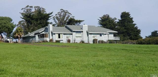 5430 Roblar Road, Petaluma, CA 94952 (#21805724) :: RE/MAX GOLD