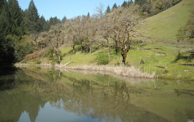 0 5500 Wild Iris Lane, Willits, CA 95490 (#21806031) :: Intero Real Estate Services