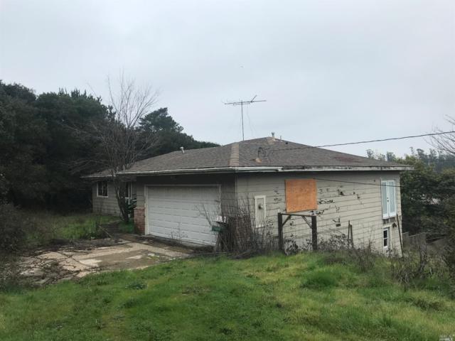 36 Live Oak Drive, Petaluma, CA 94952 (#21806173) :: RE/MAX GOLD
