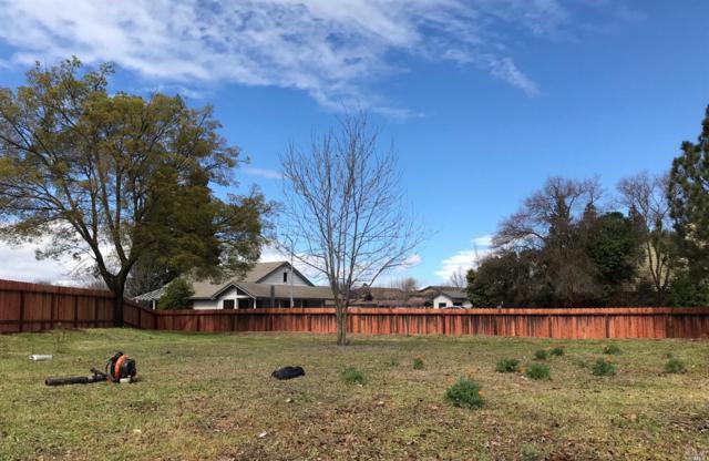 1205 Dawson Drive, Dixon, CA 95620 (#21807056) :: Rapisarda Real Estate