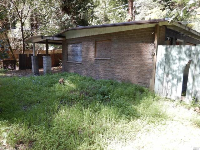 17424 Guerneville Highway, Guerneville, CA 95446 (#21807708) :: RE/MAX GOLD