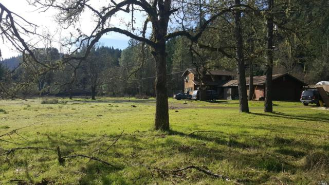 17600 Van Arsdale Road, Potter Valley, CA 95469 (#21807771) :: RE/MAX GOLD