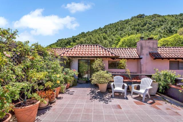 86 Grande Paseo, San Rafael, CA 94903 (#21808853) :: Ben Kinney Real Estate Team