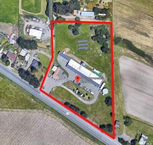 Cotati, CA 94931 :: Lisa Perotti | Zephyr Real Estate