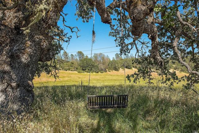 0 Pope Canyon Road, St. Helena, CA 94574 (#21809449) :: Ben Kinney Real Estate Team