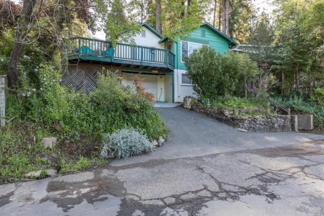 14180 Woodland Drive, Guerneville, CA 95446 (#21809602) :: Andrew Lamb Real Estate Team