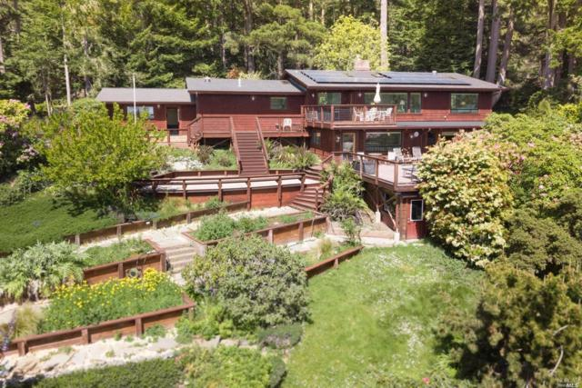 44701 Woodstock Drive, Mendocino, CA 95460 (#21810241) :: Ben Kinney Real Estate Team